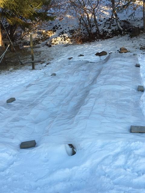 Garden tarped