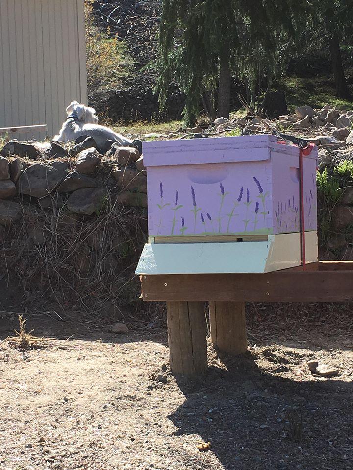 zeus and bees