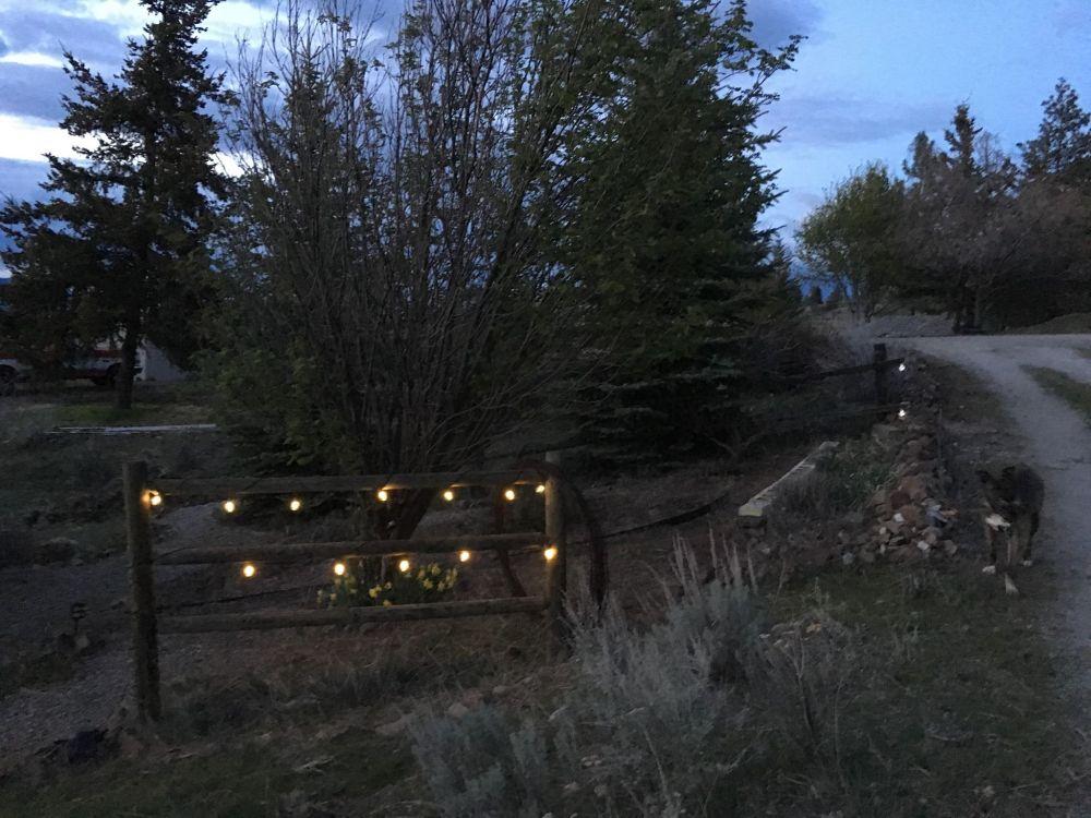 entry solar lights
