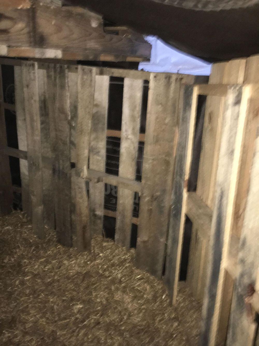 inside shelter