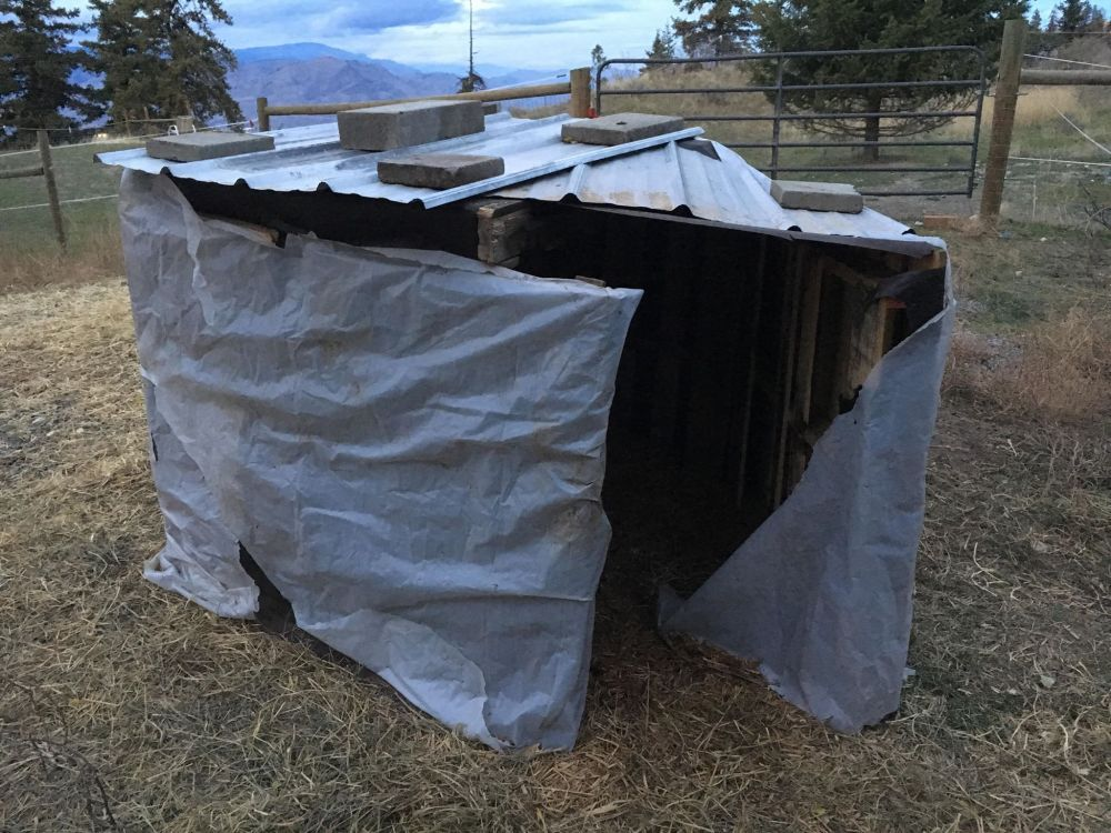 wrapped shelter